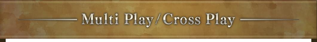 Multi Play/Cross Play